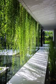 moss wall maintenance living art cool walls are the hottest trend