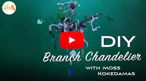 Chandelier Advertising Make A Branch Chandelier With Moss Kokedama Embrace The Hoarder