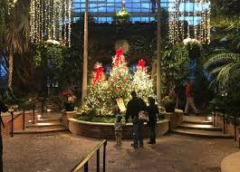 phipps conservatory christmas lights 5 things to do in pittsburgh for the holidays a pittsburgh christmas