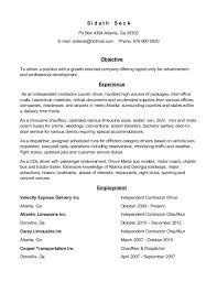 Delivery Driver Duties Resume Professional Masters Report Sample Resume For Clothing Store
