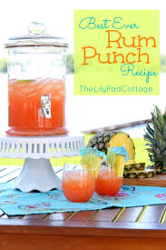 Totally Awesome Party Punch Ideas Lilypad Cottage Rum Punch Recipe Ginger Ale Pineapple Juice