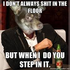 Stoner Dog Meme Generator - i don t always shit in the floor but when i do you step in it the