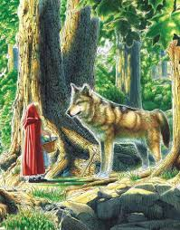 story red riding hood jacob grimm wilhem grimm