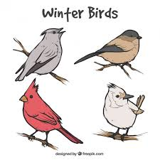 set of birds sketches on branches vector free download