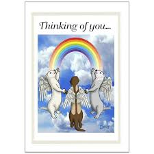 ferret rainbow bridge sympathy note cards pack of 6 u2013 mandys