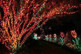 christmas lights in alabama bellingrath gardens to flip switch on 20th magic christmas in