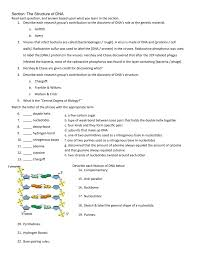 section the structure of dna read each question and answer