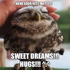 Sweet Dreams Meme - hava good rest matty sweet dreams hugs cute owl