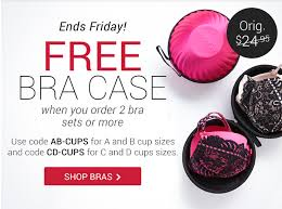 free bra case or free stockings from adore me my subscription