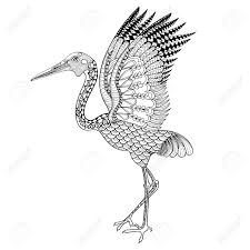 hand drawn brolga australian crane illustration for antistress