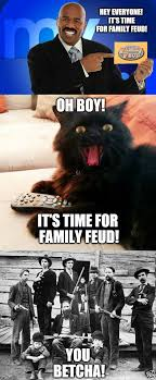 Hey Boy Meme - oh boy cat hey time for family feud imgflip