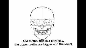 tutorial how to draw a skull step by step hd youtube