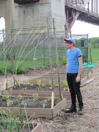 nick storrs the randall u0027s island urban farm