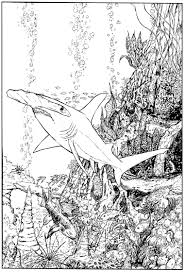 hammerhead shark coloring page virtren com