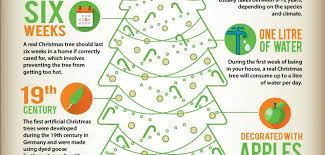 the history of christmas trees infographic only infographic