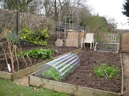 Garden Allotment Ideas Grow Like A Pro On An Enfield Allotmentparikiaki Parikiaki