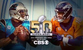 What Are The Super Bowl Predictions From 14 Animals Across The - super bowl 50 preview and predictions panthers by 10