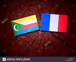 Comoros Flag French Comoros Stock Photos U0026 French Comoros Stock Images Alamy
