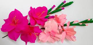 gladiolus flower how to make paper flowers gladioli glads gladiolus flower