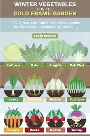 Fall Vegetable Garden Ideas Fall Winter Vegetables Garden Winter Vegetable Garden Zone 8