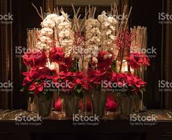 red poinsettia amaryllis and white orchid christmas flower
