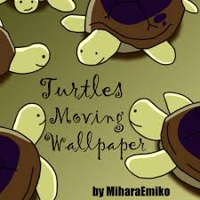 wallpaper design moving aph turtles moving wallpaper by miharaemiko on deviantart