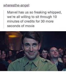 Funny Movie Memes - wheresthe angel marvel has us so freaking whipped we re all willing