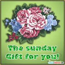sunday gift colorful flowers for you
