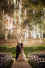 tree lights outdoor wedding