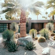 Modern Front Yard Desert Landscaping With Palm Tree And Before U0026 After Palm Springs Party Pad Becomes A Sleek Retreat