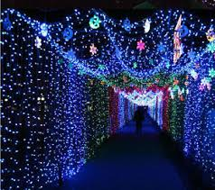 28 feet 9m rice home decoration lighting for diwali marriage