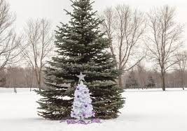 small white tree with purple and silver decorations