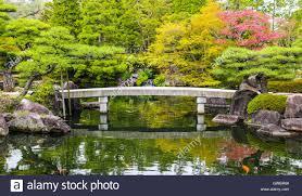zen garden pond with bridge and carp fish in japan stock photo