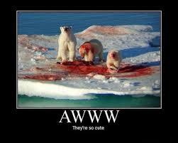 Coke Bear Meme - polar bear blood coke