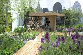 roof garden plants roof garden plants a living wall and wetland plants collect every
