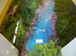 3d Bathroom Floors by Bathroom Floor Painting Illusion