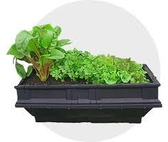 raised garden bed kits vegepod