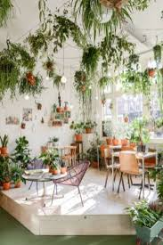 apartment plants 60 best indoor plants decor ideas for apartment and home air