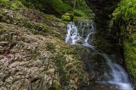 Bad Urach Wandern Schönheit Der Schwäbischen Alb Bachlauf Am Rulamanweg Bad Urach