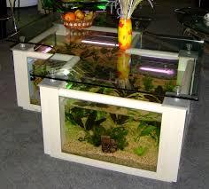 quirky table aquarium design ideas kizzu