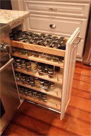 kitchen cabinet organization solutions shelves delightful under sink cabinet organizer food pantry