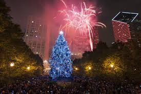 city of chicago christmas tree submissions