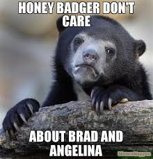Meme Honey Badger - honey badger don t care about brad and angelina meme confession