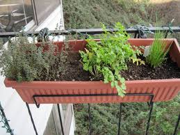 herb gardens in pots home outdoor decoration