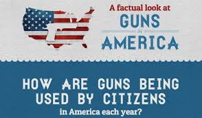 american gun facts