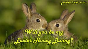 my easter bunny will you be my easter honey bunny quotes lover