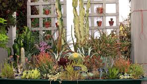 garden design garden design with send succulent garden succulent