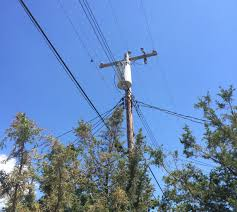 utility line clearance raritan valley tree service middlesex