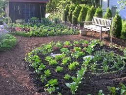 225 best vegetable garden ideas images on pinterest garden ideas