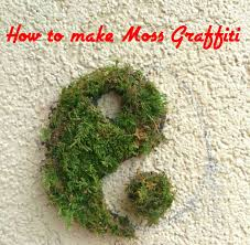 Moss How To Make Moss Graffiti 100 Working Method 7 Steps With